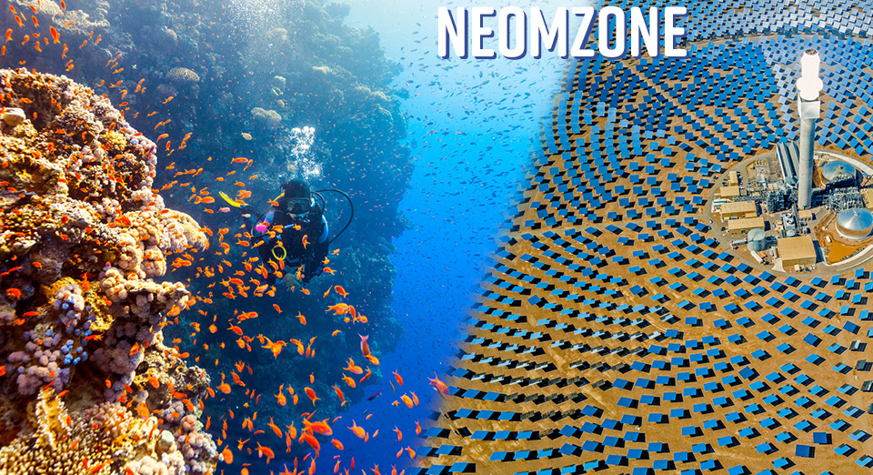 neomzone title and montage with colorful schools of fish at left blending with circular solar panels at right
